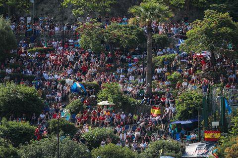 Crowd, Urban area, Tree, Metropolitan area, Event, Plant, Photography, City, Festival, Landscape,