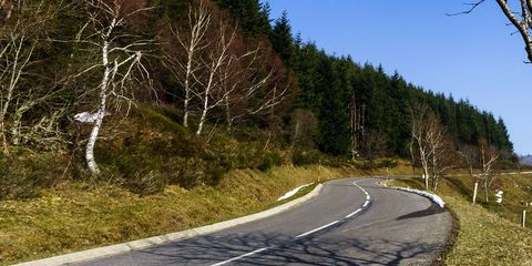 Road, Mountain pass, Tree, Sky, Mountain, Asphalt, Road surface, Infrastructure, Slope, Leaf,