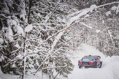 Snow, Winter, Freezing, Blizzard, Winter storm, Motor vehicle, Vehicle, Tree, Car, Geological phenomenon,