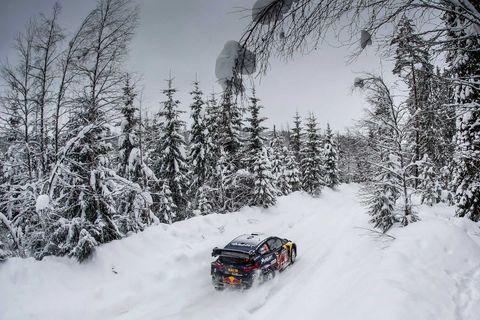 Snow, Winter, Freezing, Vehicle, Geological phenomenon, World rally championship, Motorsport, Tree, Racing, Car,