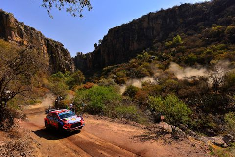 Vehicle, Regularity rally, Mountainous landforms, Wilderness, Car, World rally championship, Plant community, Dirt road, Rallying, Mountain,