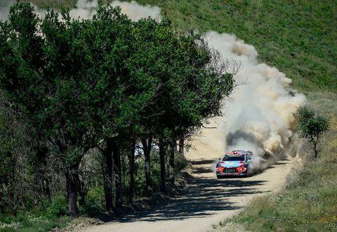 World rally championship, Rallying, Vehicle, Vegetation, Car, Motorsport, Tree, Racing, Auto racing, Plant community,