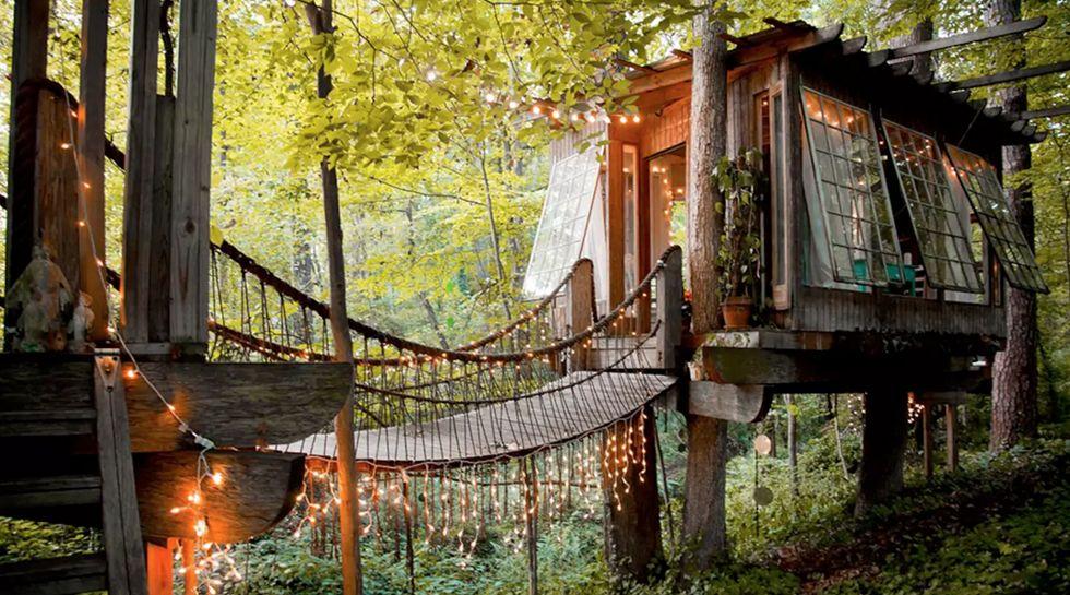 La casa ms famosa de Airbnb se encuentra en los rboles