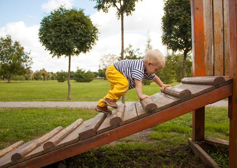 Wood, Public space, Tree, Leisure, People in nature, Hardwood, Sneakers, Human settlement, Outdoor play equipment, Lumber,