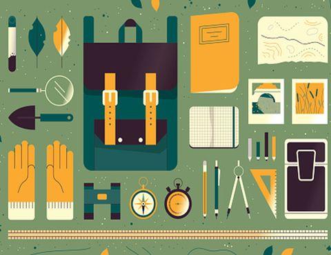 Presentar Un Informe Eficaz Comprensible Y Bien Presentado