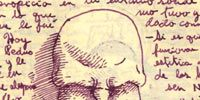 Organism, Forehead, Jaw, Interaction, Organ, Temple, Illustration, Handwriting, Tooth, Drawing,