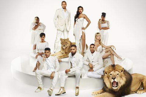People, Lion, White, Big cats, Carnivore, Roar, Felidae, Fashion, Sitting, Masai lion,