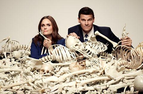 Bone, Skeleton, Natural material, Skull, Anthropology, Collection,