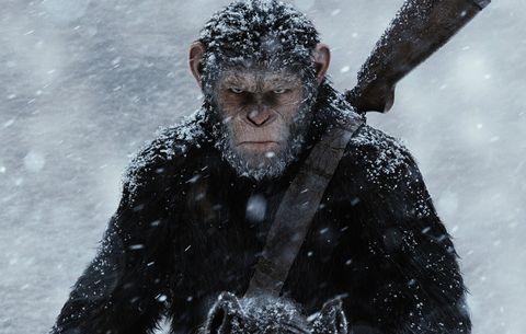Winter, Black hair, Facial hair, Fur, Snow, Headpiece, Freezing, Beard, Winter storm, Blizzard,