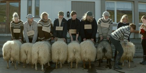 Human, People, Textile, Community, Headgear, Sheep, Grey, Sheep, Herd, Fur,