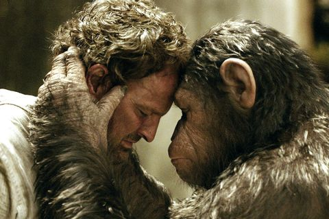 Skin, Facial hair, Interaction, Love, Beard, Fur, Natural material, Romance, Fur clothing, Animal product,