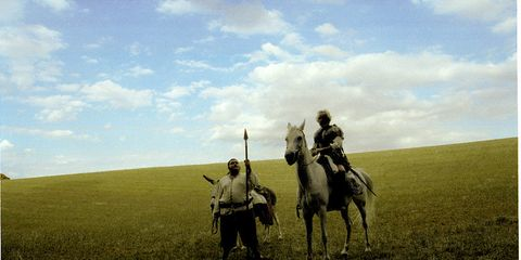 Bridle, Plain, Grassland, Working animal, Horse, Horse supplies, Halter, Horse tack, Ecoregion, Rein,