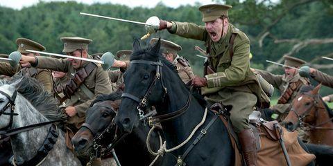 Halter, Human, Bridle, People, Rein, Horse supplies, Vertebrate, Horse tack, Horse, Working animal,