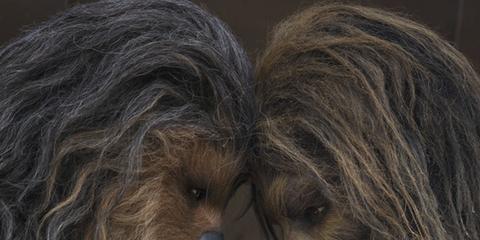 Hair, Fur, Fictional character,