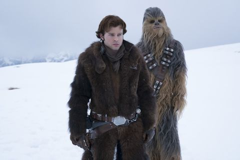 Chewbacca, Fur, Fur clothing, Snow, Outerwear, Winter, Long hair, Fictional character,