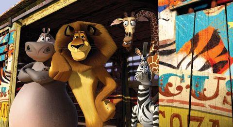 Animated cartoon, Animation, Art, Felidae, Room, Toy, Lion, Big cats, Games,