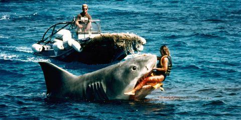 Human, Nature, Organism, Vertebrate, Marine mammal, Water, Photograph, Jaw, Adaptation, Interaction,