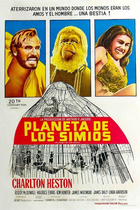 Poster, Movie, Human,