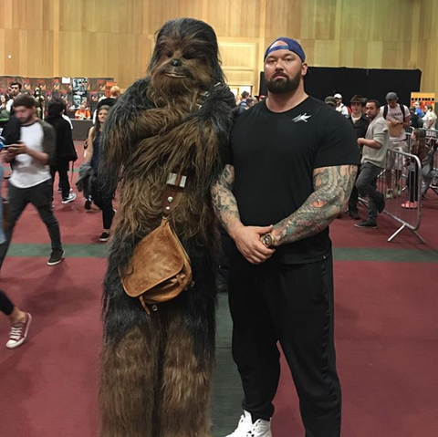 Chewbacca, Costume, Fictional character, Fur, Cosplay,