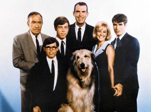 Human, People, Dog breed, Carnivore, Dog, Collar, Formal wear, Coat, Suit, Tie,