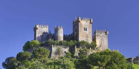 Vegetation, Plant, Plant community, Tree, Building, Castle, Landmark, Woody plant, Grassland, Medieval architecture,