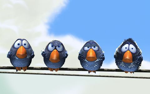 Blue, Organism, Beak, Bird, Azure, Orange, Animation, Flightless bird, Egg, Wing,
