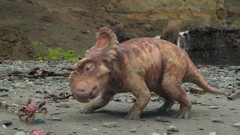 Las 10 Mejores Pelis De Dinosaurios Segun Un Paleontologo Comparte la película con tus amigos! las 10 mejores pelis de dinosaurios