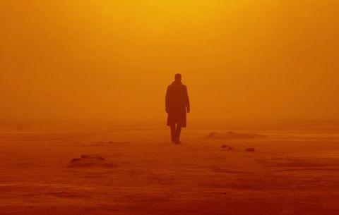 Sky, Atmospheric phenomenon, Horizon, Morning, Orange, Sunrise, Yellow, Standing, Ecoregion, Dawn,