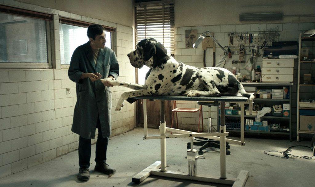 Matteo Garrone vuelve a casa con 'Dogman'