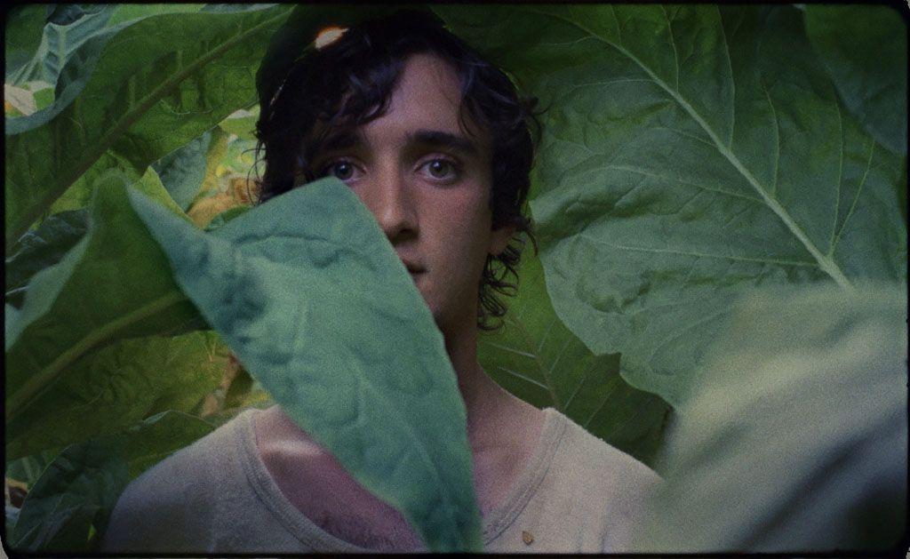 'Lazzaro Felice', de Alice Rohrwacher: Una Palma de Oro para esta mujer
