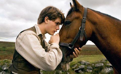 Human, Horse supplies, Bridle, Horse, Halter, Mammal, Working animal, Horse tack, Rein, Jaw,