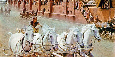 Human, People, Bridle, Vertebrate, Rein, Halter, Horse supplies, Horse, Horse tack, Working animal,