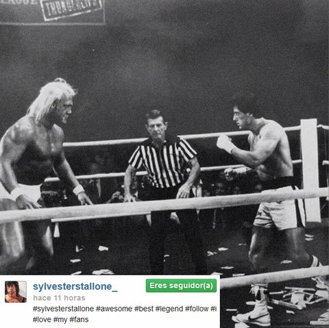 Contact sport, Combat sport, Referee, Wrestling, Muscle, Striking combat sports, Professional wrestling, Boxing ring, Wrestler, Parallel,