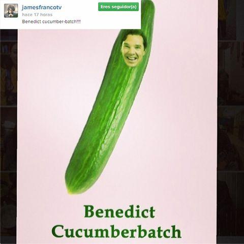 Green, Photograph, Text, Line, Font, Ingredient, Produce, Fruit, Snapshot, Advertising,