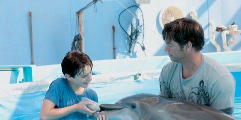 Human, Vertebrate, Water, Mammal, Common bottlenose dolphin, Leisure, T-shirt, Bottlenose dolphin, Marine mammal, Common dolphins,