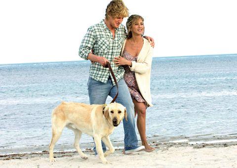 Human, Coastal and oceanic landforms, Dog breed, Dog, Shore, Vertebrate, Carnivore, Leisure, Mammal, Summer,