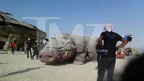 Landscape, Jaw, Reptile, Travel, Terrestrial animal, Sand, Rhinoceros, Military, Flesh,