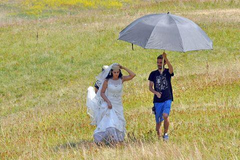 Human, Grass, Umbrella, Dress, People in nature, Grassland, Interaction, Plain, Grass family, Field,