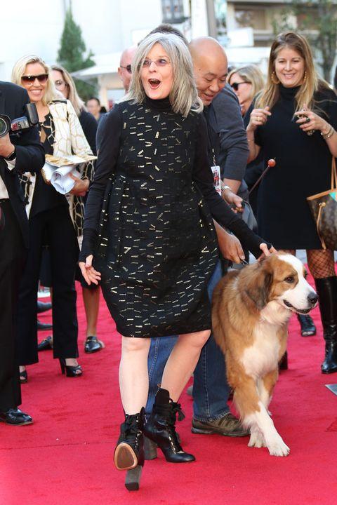 Footwear, Human, Leg, Dog breed, Trousers, Dog, Carnivore, Coat, Outerwear, Dress,