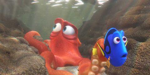 Organism, Marine invertebrates, Toy, Animation, Marine biology, octopus, Ray-finned fish,
