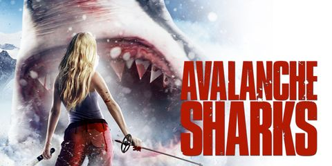Tooth, Lamnidae, Shark, Lamniformes, Jaw, Cartilaginous fish, Great white shark, Requiem shark, Carcharhiniformes, Fictional character,