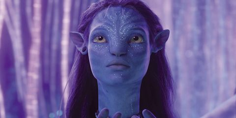 Blue, Face, Purple, Violet, Lavender, Head, Beauty, Eye, Organ, Human,
