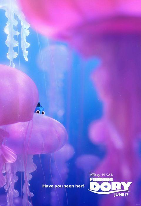 Blue, Purple, Violet, Magenta, Lavender, Invertebrate, Electric blue, Majorelle blue, Marine invertebrates, Jellyfish,
