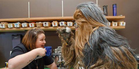 Chewbacca, Long hair, Blond, Brown hair, Shelf, Fictional character, Layered hair, Artificial hair integrations, Shelving, Hair coloring,