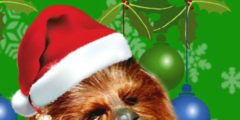 Villancico Feliz Navidad A Todos.Chewbacca Te Desea Feliz Navidad Con Un Villancico