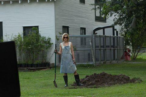 Lawn, Yard, Grass, Backyard, House, Tree, Grass family, Garden, Home, Dress,