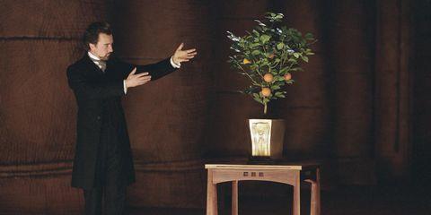 Flowerpot, Standing, Suit trousers, Formal wear, Flower Arranging, Bouquet, Vase, Artifact, Artificial flower, Floristry,