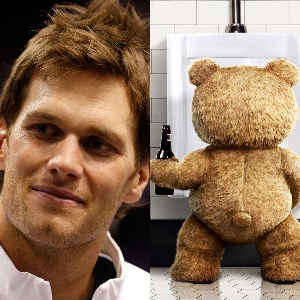 El jugador Tom Brady donará su esperma al oso Ted