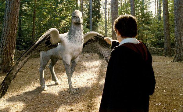 El rodaje del spin-off de 'Harry Potter' comenzará en verano
