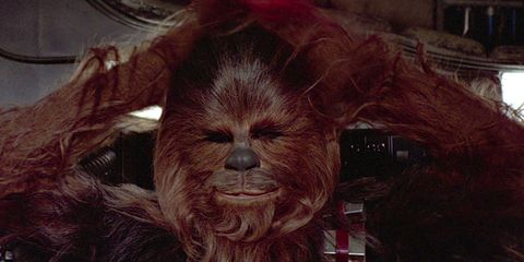 Fictional character, Chewbacca, Wrinkle,